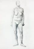 Naked woman figure Royalty Free Stock Photos