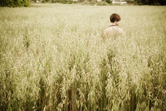 Naked woman on meadow. Nude young woman in a meadow Stock Image
