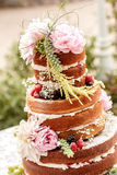 Naken bröllopstårta Arkivbilder