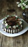Naken droppandekaka med choklad som dekoreras med jordgubbar, jasminblommor och kaprifolen på den bruna trätabellen Royaltyfri Bild