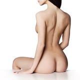 naken elegant lady Fotografering för Bildbyråer