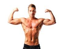 Naket poserar posera för attraktiv ung muskulös man, dubbel biceps Royaltyfri Bild