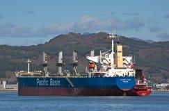 Nakhodka Zatoka Wschodni (Japonia) morze 04 2015 Październik: Bunkering tankowa Leda DV masowego przewoźnika Elizabeth rzeka Fotografia Stock