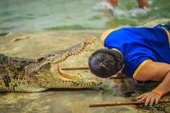 Nakhon Pathom Thailand - Maj 18, 2017: Riskabla krokodilshower på Royaltyfri Fotografi