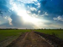 Nakhonayok sierpień 9th 2016: droga przemian blisko ryżu pola przy zmierzchem Zdjęcia Royalty Free