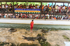 NAKHONPRATOM PROVINCE THAILAND-APRIL,4 :Traveler see crocodile s Royalty Free Stock Image