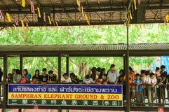 NAKHONPRATOM PROVINCIE 4 THAILAND-APRIL: De reiziger ziet krokodil s Royalty-vrije Stock Afbeelding