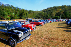 Nakhonratchasima, Thailand - December 20, 2014: Many Classic Austin Mini Cooper at Mini Mountain Festival of Thailand mini family. Club with forest background stock images