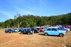 Nakhonratchasima, Thailand - December 20, 2014: Velen Klassiek Austin Mini Cooper in Mini Mountain Festival van de minifamilie va royalty-vrije stock foto's