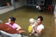 NAKHONSAWAN - 13 OTTOBRE: La gente che vive nell'area, ha un'alta inondazione Fotografia Stock