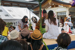 Naki-zumo (sumo de bébé de cri) au tombeau de Gokoku-jinja Photos stock