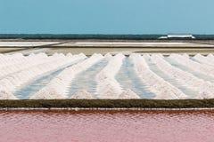 Naklua o azienda agricola del sale Immagini Stock