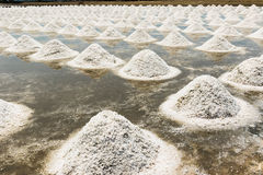 Naklua or salt farm Royalty Free Stock Image