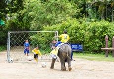 NAKORNPATHOM TAILANDIA, il 20 giugno:  Gli elefanti giocano a calcio il perfor Immagine Stock