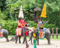 NAKORNPATHOM THAILAND, June 20:  Elephants and Thailand warriors Stock Images