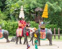 NAKORNPATHOM THAILAND, June 20:  Elephants and Thailand warriors Stock Images