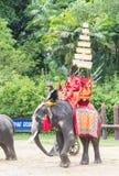 NAKORNPATHOM THAILAND, June 20:  Elephants and Thailand warriors Stock Photography
