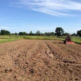 NAKORNRACHASEEMA, THAILAND-JUNE 08日2014年:农民种田 免版税库存图片