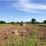 NAKORNRACHASEEMA, ΤΑΪΛΑΝΔΗ 8 ΙΟΥΝΊΟΥ 2014: Καλλιέργεια αγροτών Στοκ Εικόνες