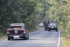 Nakornratchasima Tajlandia, Luty, - 20, 2016: Parkowi leśniczowie Auty Obrazy Stock