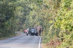 Nakornratchasima, Thailand - Februari 20, 2016: Parkbereden politie Aut Royalty-vrije Stock Afbeelding