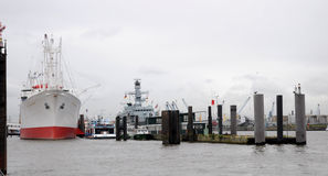 Nakrętka San Diego w schronieniu Hamburg Zdjęcia Royalty Free