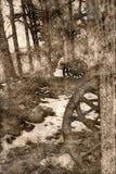 Nakreślenie Amerykański wojny domowej działo Chujący w drzewach ilustracja wektor