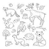 Nakreślenie lasu zwierzęta Lasu dziecka łosia dzięcioła ślicznego zwierzęcego szopowego zajęczego jeża lisa tumakowi dzieci doodl ilustracji