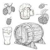 Nakreślenia chmiel roślina, drewno kubki, lufowi i piwni Zdjęcie Royalty Free