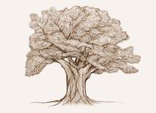 nakreślenia drzewo royalty ilustracja