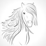 Nakreślenie końska głowa z grzywą na bielu. Wektor Zdjęcia Royalty Free