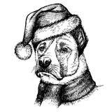 Nakreślenie pies w Święty Mikołaj kapeluszu Zdjęcia Stock