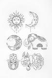 Nakreślenie słonia słońca kwiatu księżyc bielu tło Obraz Royalty Free