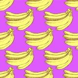 Nakreślenie smakowici banany w rocznika stylu royalty ilustracja
