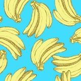 Nakreślenie smakowici banany w rocznika stylu ilustracja wektor