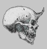 Nakreślenie Czarcia czaszka Fotografia Royalty Free