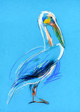 Nakreślenie pelikan Zdjęcia Royalty Free