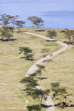 Nakuru National Park Landscape, Kenya Royalty Free Stock Image