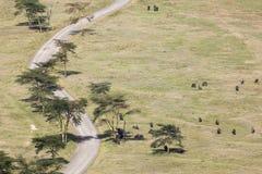 Nakuru National Park Landscape, Kenya Stock Photos