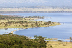 Nakuru National Park Landscape, Kenya Royalty Free Stock Photos