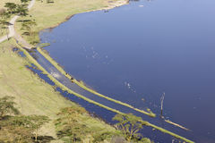 Nakuru National Park Landscape, Kenya. Lake in Nakuru National Park seen from an observation point in Kenya Stock Image