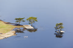 Nakuru National Park Landscape, Kenya. Lake in Nakuru National Park seen from an observation point in Kenya Royalty Free Stock Photography