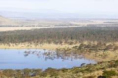 Nakuru National Park Landscape, Kenya Stock Image