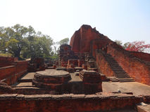 Nalanda universitet Royaltyfri Foto