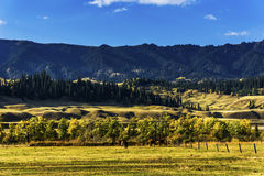 NaLaTi grassland in Xinjiang, China Stock Photo