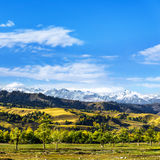 NaLaTi grassland in Xinjiang, China Stock Photo