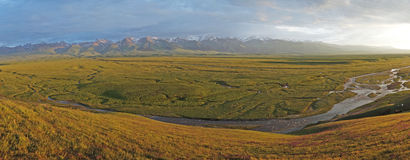 Nalati grässlätt med snöberg Arkivbilder