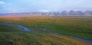 Nalati obszar trawiasty z śnieżnymi górami Zdjęcie Stock