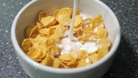 Nalewać mleko w pucharze z suchymi cornflakes przygotowywa śniadanie zbiory wideo