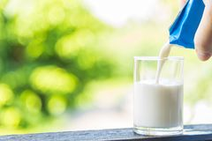 Nalewać mleko w szkło na drewnianym poręczu z natury backgrou Zdjęcia Royalty Free